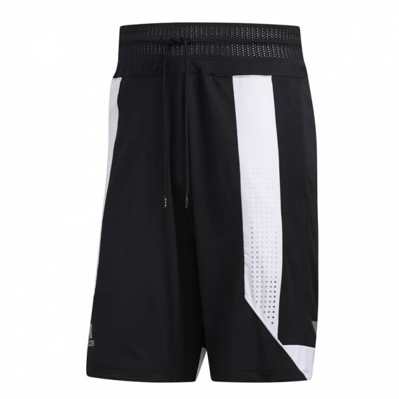 CREATOR 365 SHORT BLACK