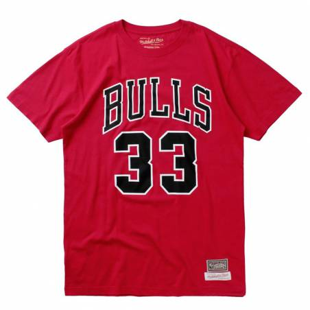 LAST DANCE SCOTTIE PIPPEN BULLS