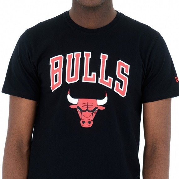TEAM LOGO TEE CHICAGO BULLS