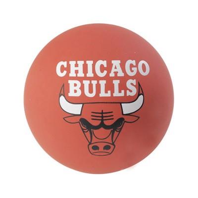 NBA SPALDEENS BULLS